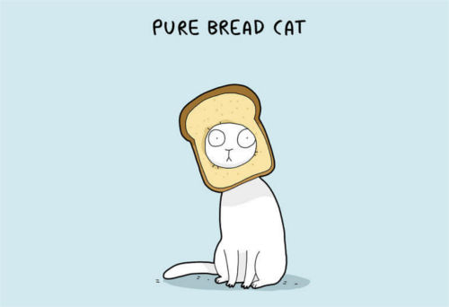 Top 30 Really Funny Cat Puns For Every Occasion