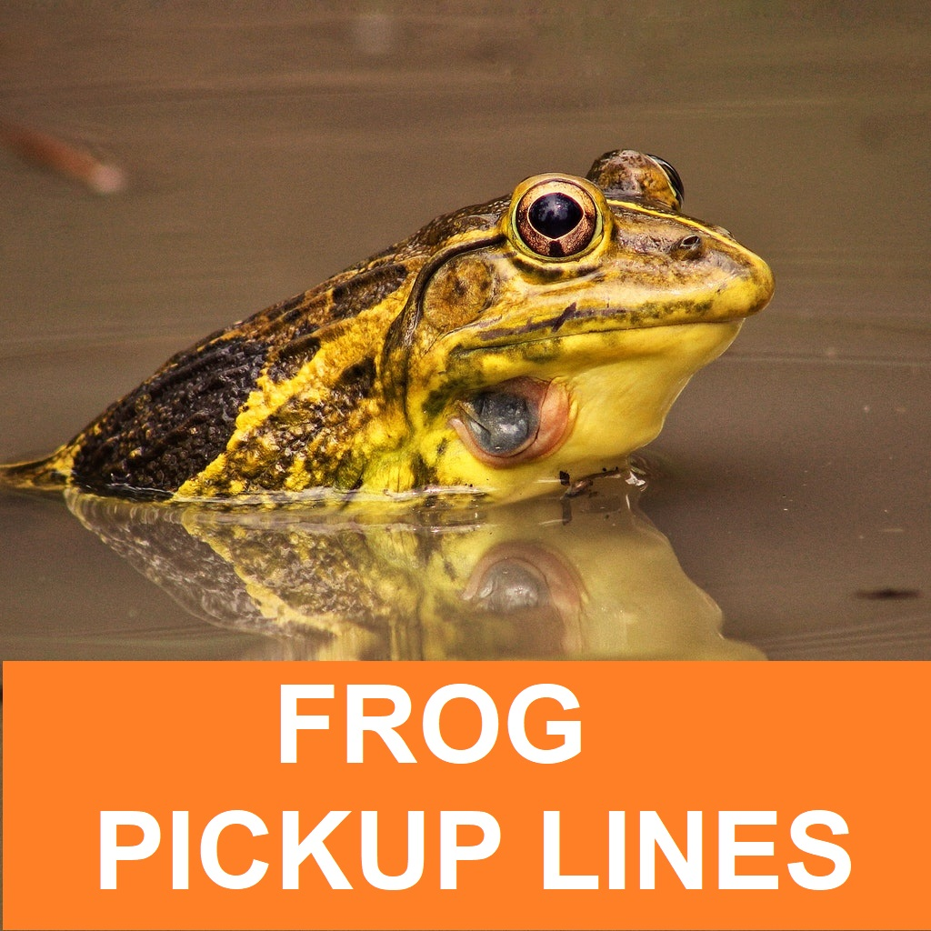 [Top 50] Toad Frog Pick Up Lines!