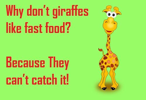 Giraffe Puns, Jokes and Pick Up lines! 2