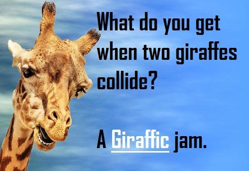 Giraffe Puns, Jokes and Pick Up lines! 5