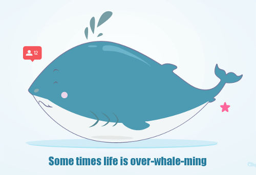 [Top 50] Whale Puns That Will Blow You Away 8