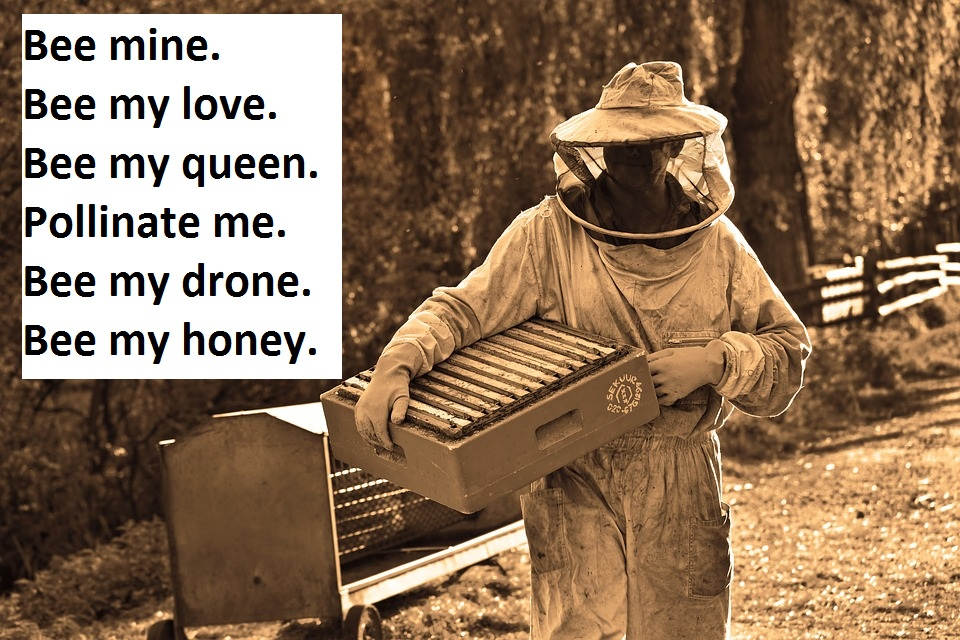 [Top 80+] Honey Bee Pick Up Lines That Are Un-BEE-lievably BEE-utiful! 2
