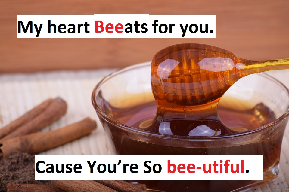 [Top 80+] Honey Bee Pick Up Lines That Are Un-BEE-lievably BEE-utiful! 3
