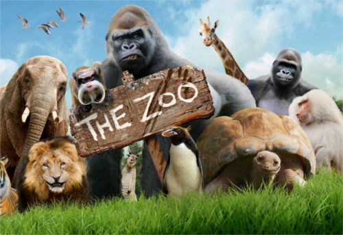 [Top 50] Zoo, Zookeeper Pick Up Lines - Use These at the Zoo! 1