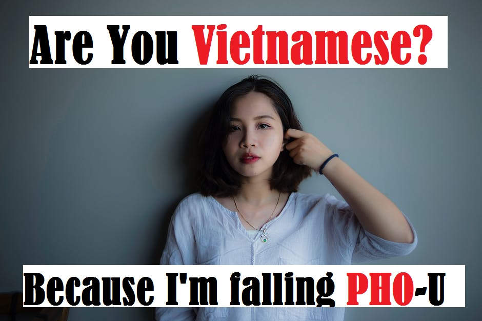 Cheesy Dirty Vietnam Pick up Lines