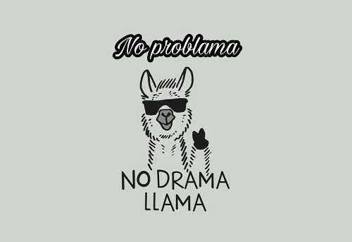 [Top 80+] Llama Alpaca Pick Up Lines,Puns,Jokes To Use On Hilly People! 6