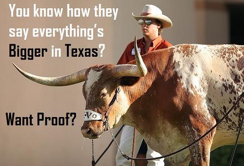 [Top 80+] Wild West Texas Pick Up Lines 5