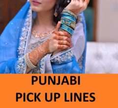 [Top 35] Desi Punjabi Pick Up Lines That are Quirky! 10